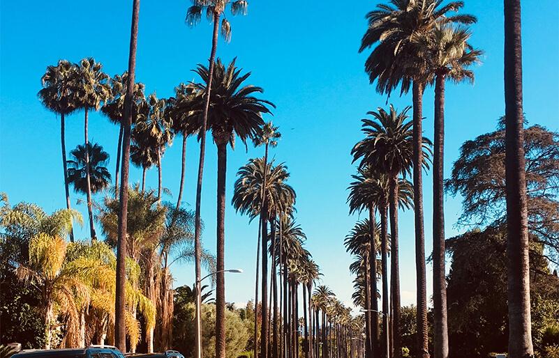 VillaRebecca-Los-Angeles-Sunny